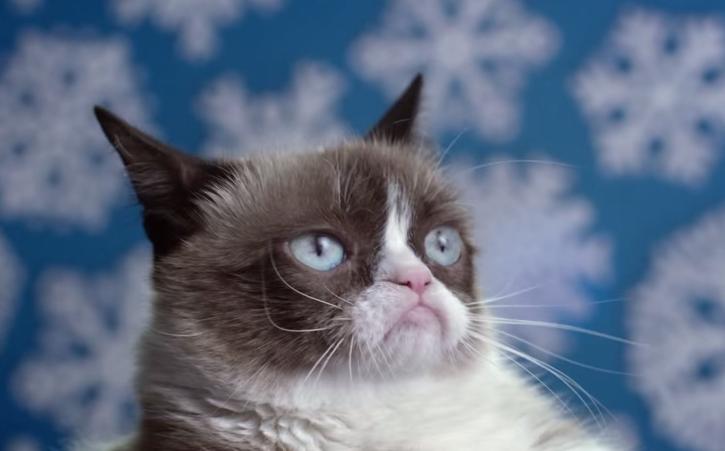 Grumpy Cat's Worst Christmas Ever - The Trailer