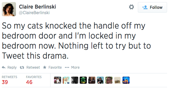 A woman got trapped in her bedroom by her cats, and she livetweeted the whole ordeal.