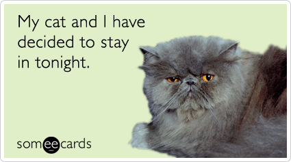 someecards.com - My cat and I have decided to stay in tonight.