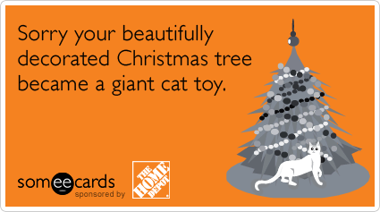 Sorry your beautifully decorated Christmas tree became a giant cat toy.