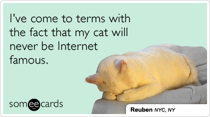 //cdn.someecards.com/someecards/filestorage/cat-video-internet-famous-pet-cats-pets-ecards-someecards.png