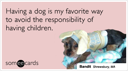 someecards.com - Having a dog is my favorite way to avoid the responsibility of having children.