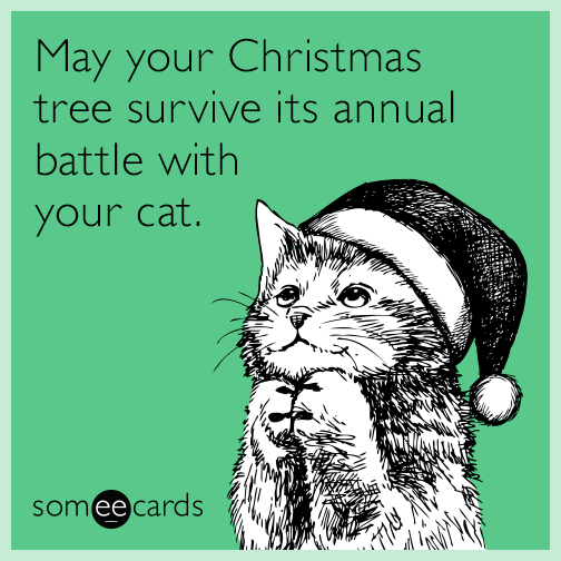 May your Christmas tree survive its annual battle with your cat.