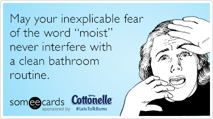"""May your inexplicable fear of the word """"moist"""" never interfere with a clean bathroom routine."""