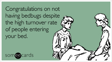 Congratulations on not having bedbugs despite the high turnover rate of people entering your bed