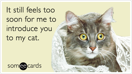 someecards.com - It still feels too soon to introduce you to my cat.