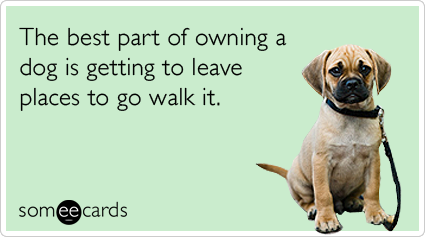 someecards.com - The best part of owning a dog is getting to leave places to go walk it.