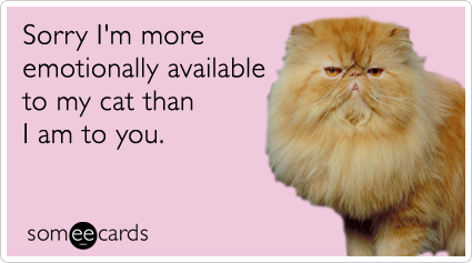 someecards.com - Sorry I'm more emotionally available to my cat than I am to you.