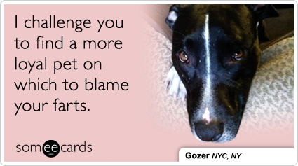 someecards.com - I challenge you to find a more loyal pet on which to blame your farts.