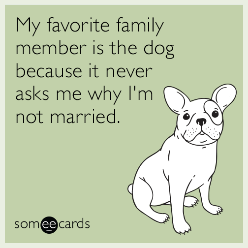 My favorite family member is the dog because it never asks me why I'm not married.