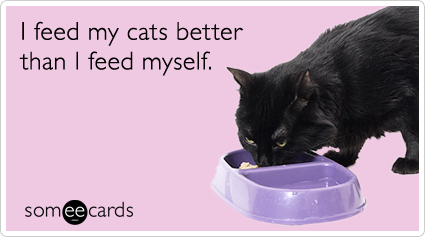 someecards.com - I feed my cats better than I feed myself.