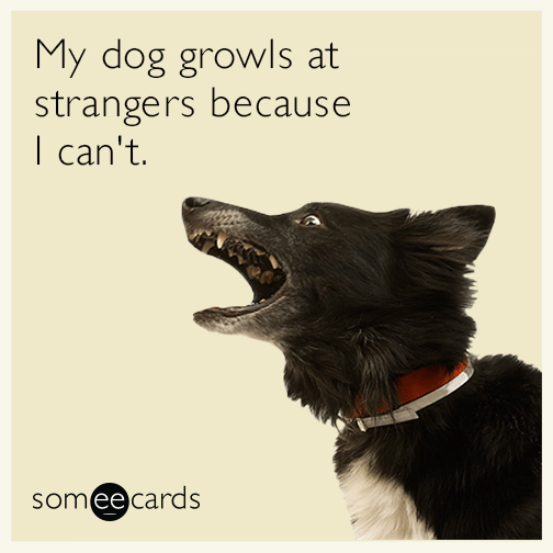 My dog growls at strangers because I can't.