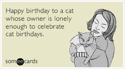 Happy birthday to a cat whose owner is lonely enough to celebrate cat birthdays.