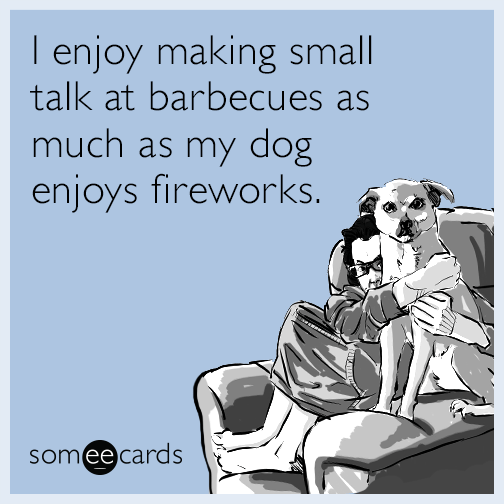 I enjoy making small talk at barbecues as much as my dog enjoys fireworks.