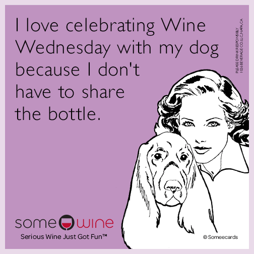 I love celebrating Wine Wednesday with my dog because I don't have to share the bottle.