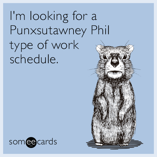 I'm looking for a Punxsutawney Phil type of work schedule.