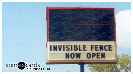 Invisible Fence Now Open
