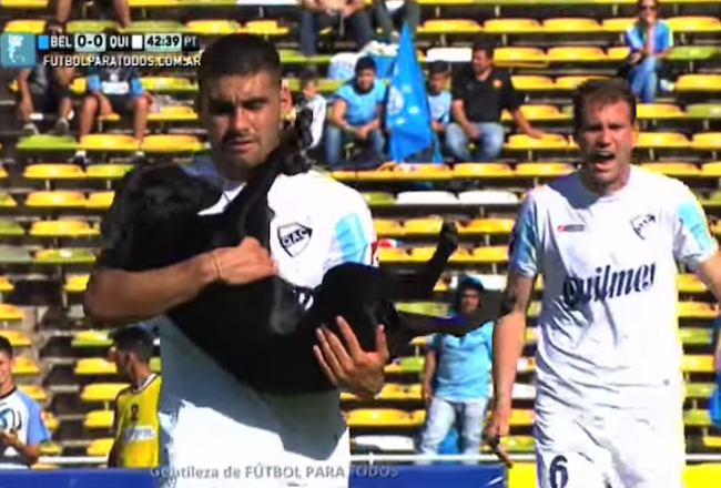 A dog ran onto the field during this soccer game to the delight of nearly everyone.