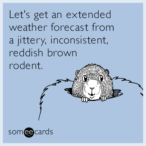 Let's get an extended weather forecast from a jittery, inconsistent, reddish brown rodent