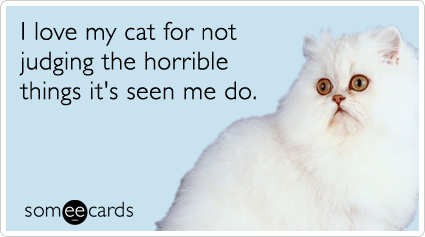 someecards.com - I love my cat for not judging the horrible things it's seen me do.