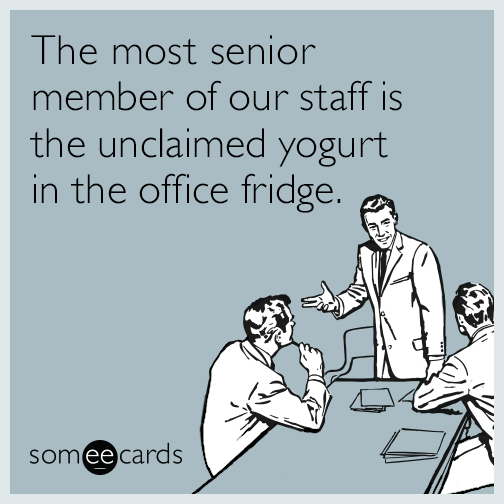 The most senior member of our staff is the unclaimed yogurt in the office fridge.