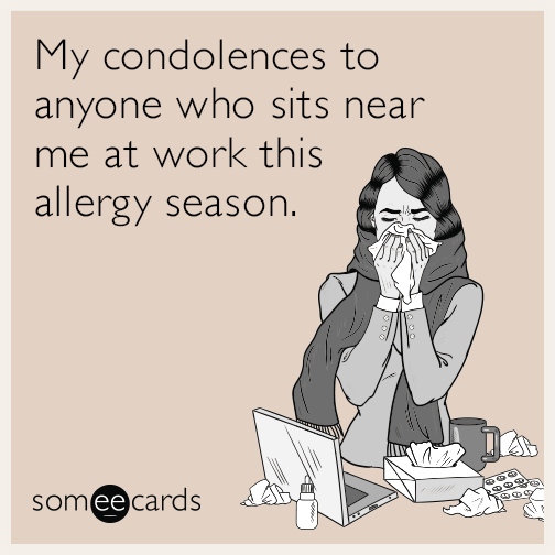 My condolences to anyone who sits near me at work this allergy season.