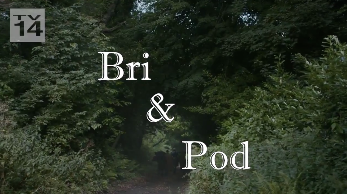 Brienne and Pod from 'Game of Thrones' are getting their own sitcom spin-off.