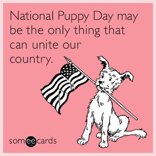 National Puppy Day may be the only thing that can unite our country.