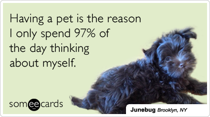 Having a pet is the reason I only spend 97% of the day thinking about myself.