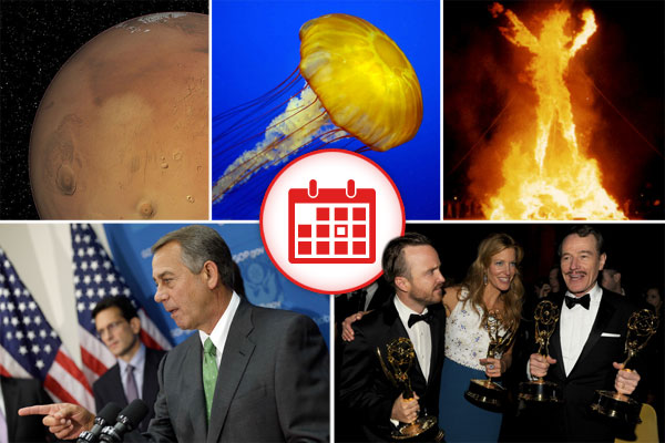 5 Things You Should At Least Pretend To Know Today - August 26, 2014