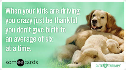 When your kids are driving you crazy just be thankful you don't give birth to an average of six at a time.