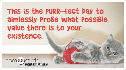 This is the Purr-fect day to aimlessly probe what possible value there is to your existence.