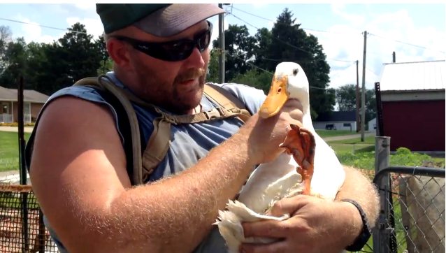 An Ohio veteran is fighting to keep his therapy ducks.