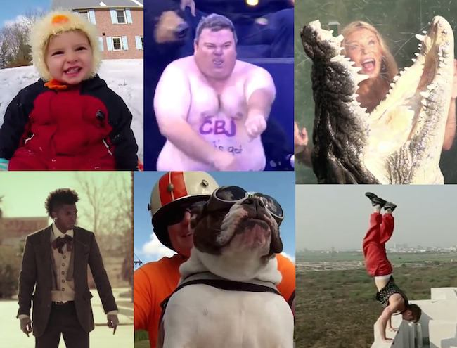 The best 200 viral videos of 2014 in one supercut.