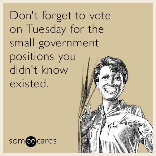 Don't forget to vote on Tuesday for the small government positions you didn't know existed.