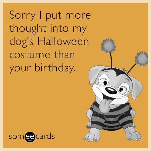 Sorry I put more thought into my dog's Halloween costume than your birthday.