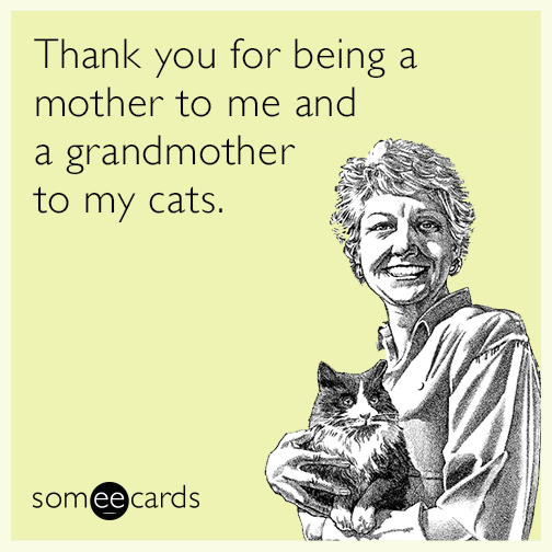 Thank you for being a mother to me and a grandmother to my cats.