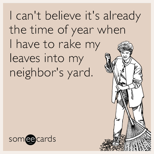 I can't believe it's already the time of year when I have to rake my leaves into my neighbor's yard.