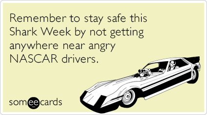 Remember to stay safe this Shark Week by not getting anywhere near angry NASCAR drivers.