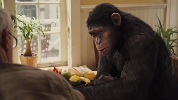 This mash-up shows that 'Dawn of the Planet of the Apes' and 'Boyhood' are practically the same movie.