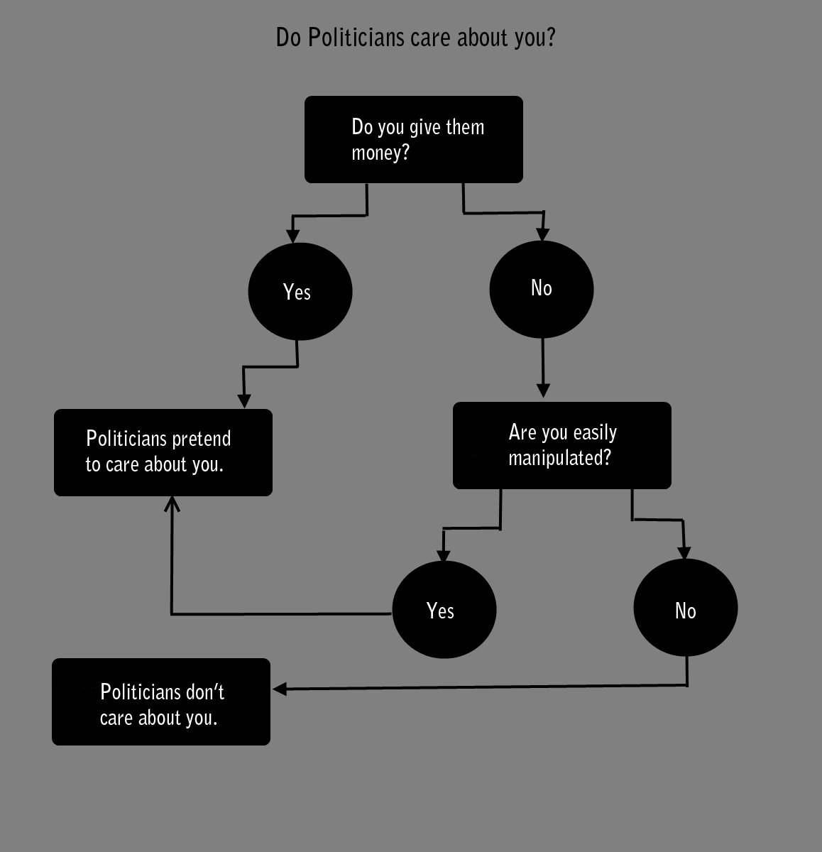 Flowchart perfectly illustrates the pointlessness of supporting any political candidate.