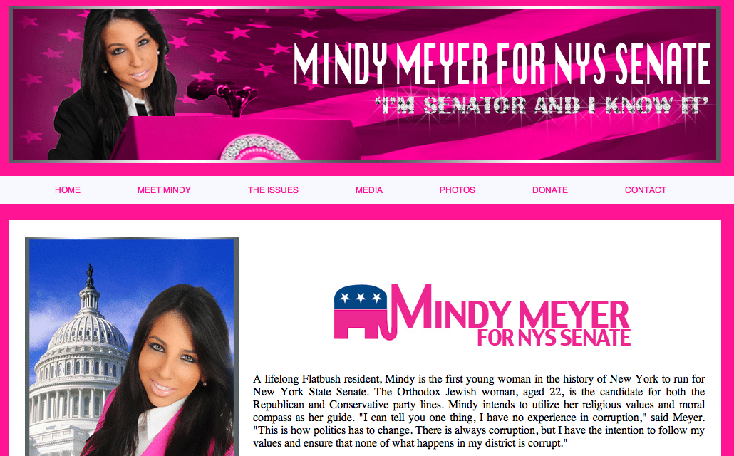 22-year-old girl demands you take her pink, bedazzled State Senate campaign seriously.