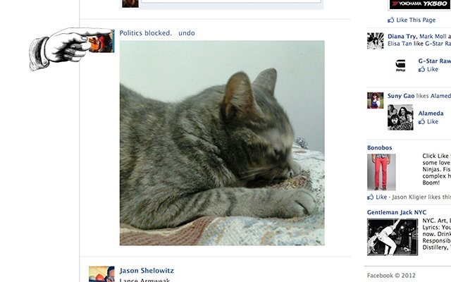 New technology lets you replace obnoxious political posts on Facebook with pictures of cats.