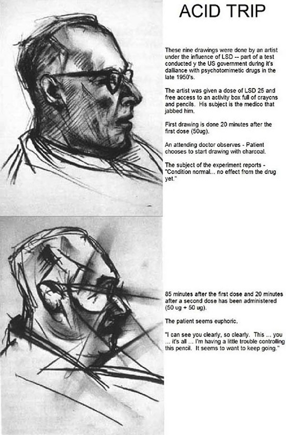 Portraits drawn over course of LSD trip make LSD seem amazing, terrifying.