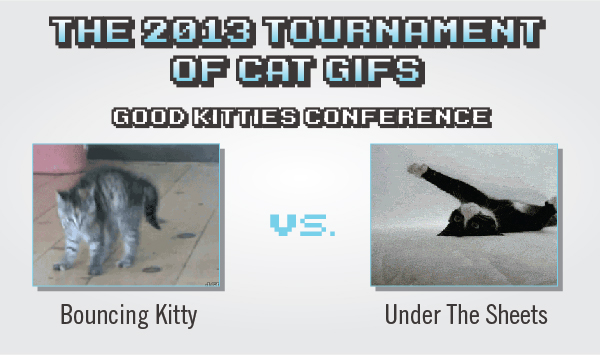 Tournament Of Cat GIFs: Bouncing Kitty Vs. Under The Sheets