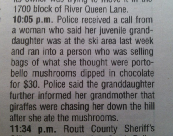 Girl on shrooms provides boring ski town's police blotter with report of killer giraffes on the loose.