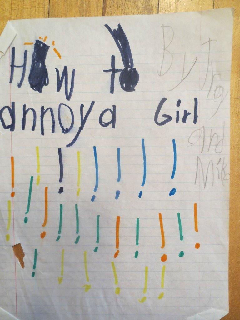 A hilariously violent guide to annoying girls, written and illustrated by two psychotic little boys.