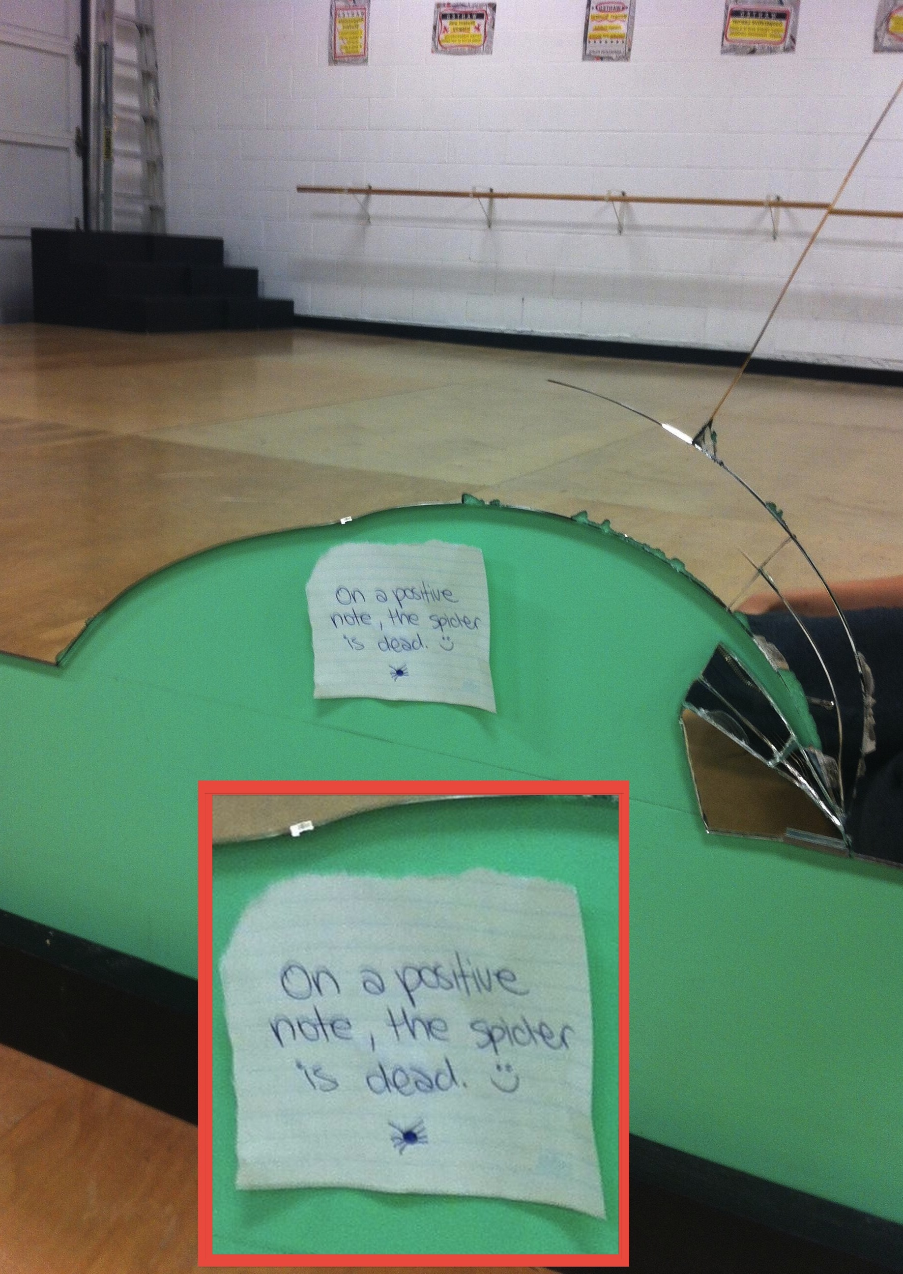 There was a spider in a dance studio lined with mirrors. It did not go well.