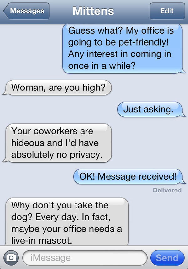 texts from mittens features texts from a woman s cat someecards