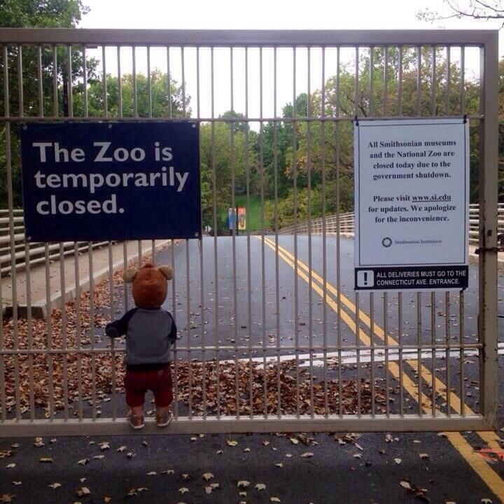 Little kid outside closed zoo makes for the most heartbreaking photo of the government shutdown we've seen yet.